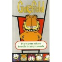Garfield:I've Seen Nicer Teeth In My Comb