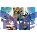 Biggles Collection