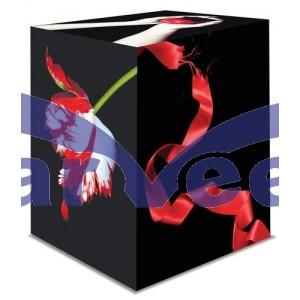 Twilight Saga Collection (Box Set)