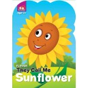 Flower : Sunflower